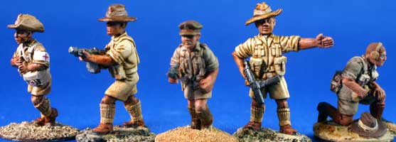 Australian Desert Infantry Command - Click Image to Close